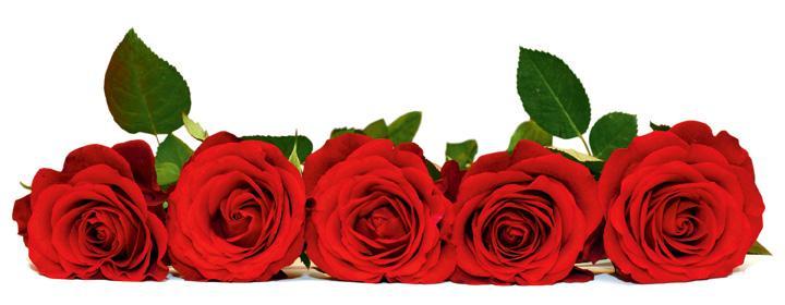 en-rose