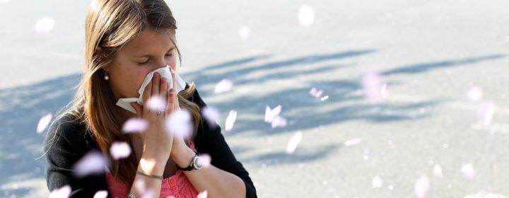 Allergi fra Sundhedshåndbogen
