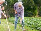 Godt nyt for haveejere (og os andre) med slidgigt