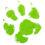 Nytænk din hunds og kats livsstil